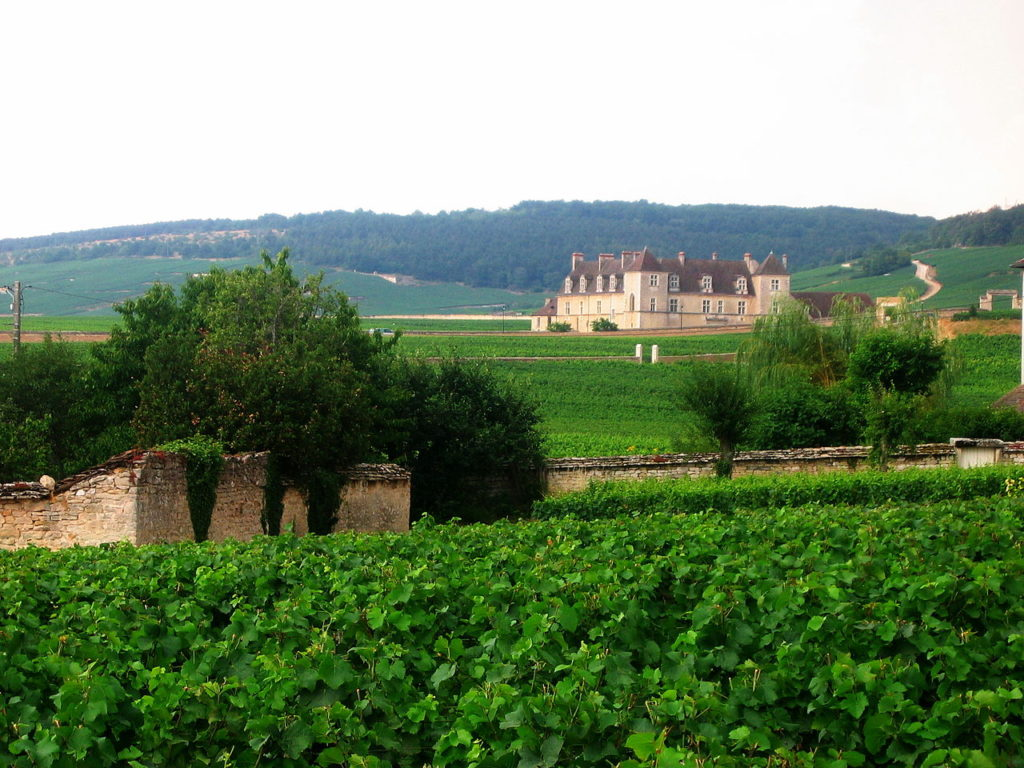 1280px-Vineyards_vougeot2