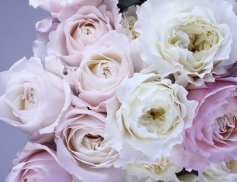 What the Flowers You Love Say About You